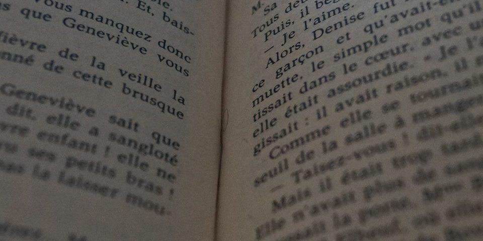 panier des brunettes - salon du livre