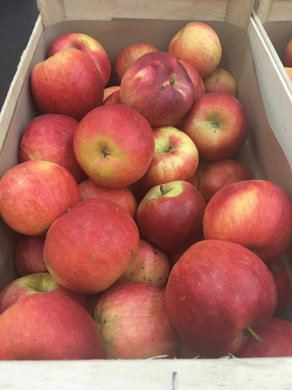 Panierdesbrunettes-monodiete-pomme