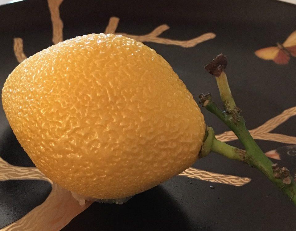 panierdesbrunettes - cedric grolet - meurice